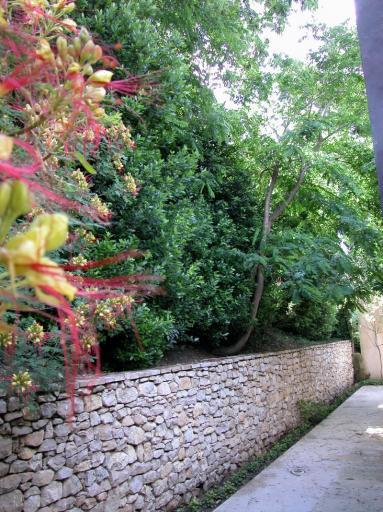Le jardin de provence entretien parcs et jardins for Contrat entretien jardin